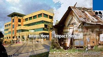 learn-a-little-bit-about-the-internship-program