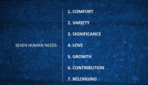 7 human needs summary