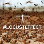 The Locust Effect: How Violence Plagues the Poor