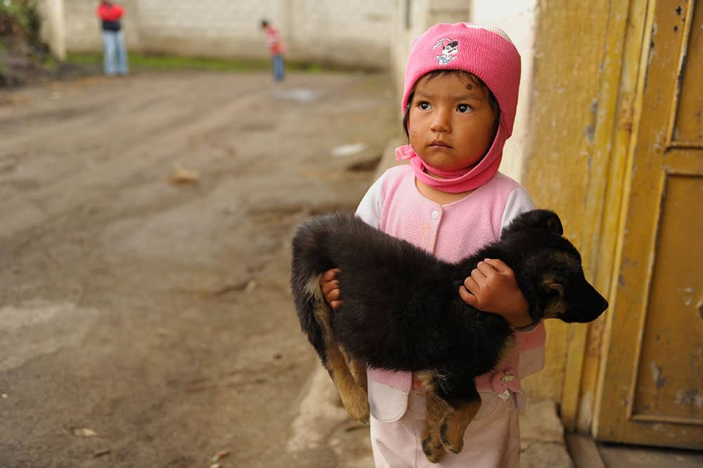 Pictures of Dogs Ecuador Girl