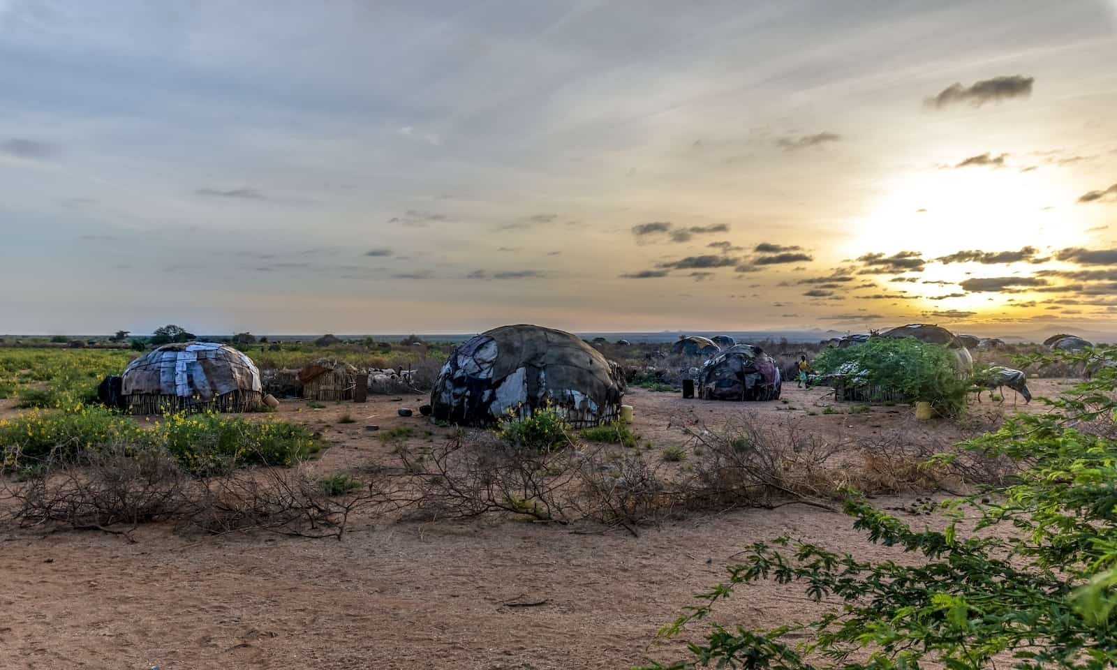 Five small rounded huts sit on a large plain with dirt and some green foliage as the sun rises.
